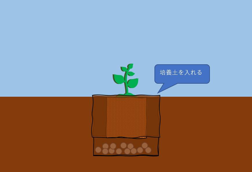 隙間に培養土を入れる